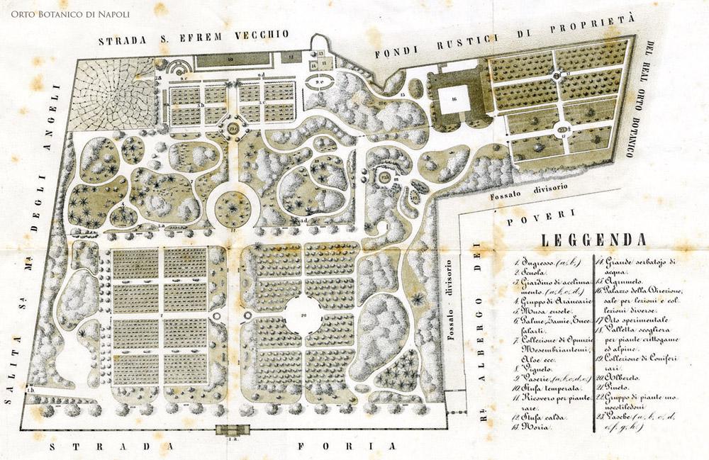 Ancien plan du jardin botanique de Naples.